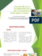 Aplicación Del PAE Con La Taxonomía NANDA NOC 1 (1)