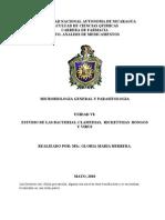 ESTUDIO DE LAS BACTERIAS, CLAMYDIAS,  RICKETTSIAS  HONGOS  Y VIRUS