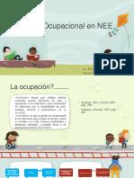 Evaluación Ocupacional de NEE Ponencia