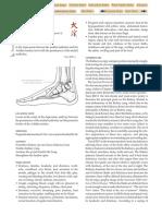 KID-3.pdf