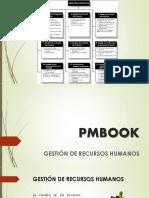 248031447-PMBOOK.pdf