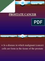 14558773 Prostate Cancer