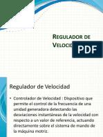 Regulador de Velocidad STE-Andritz, Capacitación 013MLLM