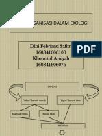 Ekologi Klp 10, Level Organisasi Ekologi