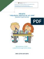 Projeto Pequenos Cientistas Ao Leme