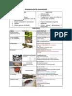 1. CLASIFICACION DE ORTOPTEROS.pdf
