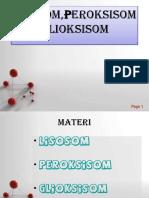 Lisosom, Peroksisom, Glikosisom