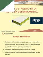 PAPELES DE TRABAJO EN LA  AUDITORÍA GUBERNAMENTAL_pptx_file(7).pptx