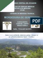 MORDEDURA DE SERPIENTES ECUADOR UCE FCM EM