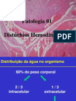 06 Aula Hemodinamicos 1