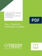 Treasy e ERPFlex - Guia prático de orçamento empresarial - Versão 04.pdf