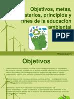 ambiental-140930165041-phpapp01