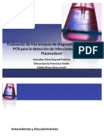PCR - Diagnostico