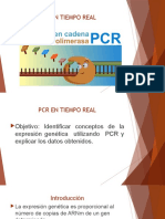 Optimizacion Del Pcr en Tiempo Real