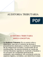 AUDITORIA-TRIBUTARIA2