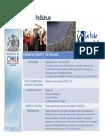 Ficha PRES Pelluhue 19.10.10_Región Maule