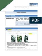 COM4_U2-SESION7.docx