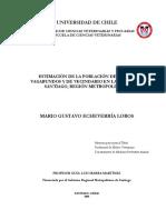 Estimación de La Población de Perros Vagabundos y de Vecindario en La Ciudad de Santiago, Región Metropolitana