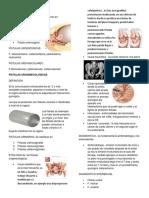 Fistulas Vaginales