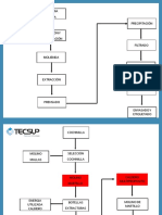 Diagrama de Proceso de Extraccion Del Carminn - Copia
