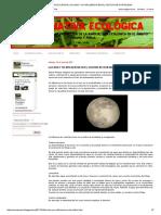 Alternativa Ecológica_ La Luna y Su Influencia en El Cultivo de Hortalizas