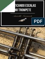 Praticando Escalas No Trompete - Amarildo Nascimento