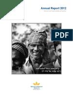 2012_Annual_Report.doc