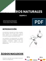 Polimeros Naturales (1)