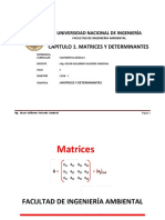 BÁSICA II_MATRICES Y DETERMINANTES