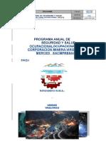 Programa Anual de Seguridad Cmvm 2018 Modificado