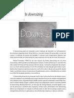 CONCEITO DE DOWNSIZING.pdf