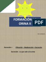 Formación de Orina Ll