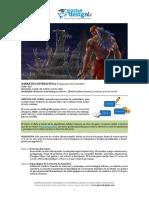 Narrativa Interactiva - Plan de Estudios