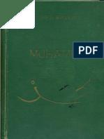 Muhammed Abdurezak Hifzi Bjelevac