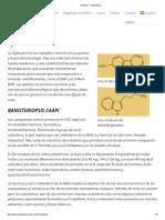 Química – Ayahuasca