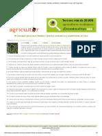 16 Consejos Para Secar Hierbas o Plantas Aromáticas y Medicinales en Casa _ ECOagricultor