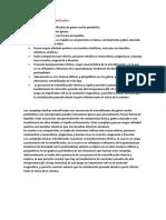 Complejos Basicos Estratificados