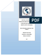 Orientación Consejeria y Psicoterapia Familiar y de Pareja - Módulo III