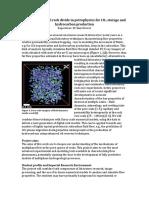 DigitalRockPetrophysics.pdf