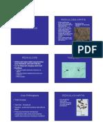 7. PEDIKULOSIS.pdf