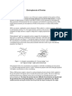6.Electrophoresis .docx