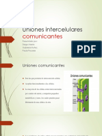 Uniones intercelulares comunicantes.pptx