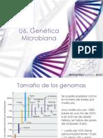 U6_GeneticaMicrobiana_19166.pdf