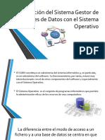 Interacción Del Sistema Gestor de Bases de Datos