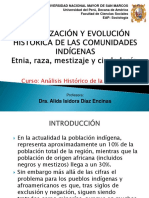Teoria Organizaciones Indigenas