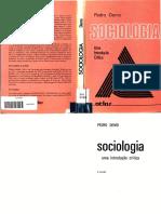 Pedro Demo. Sociologia uma introduo crtica.pdf