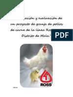 Evaluacion de Prefactibilidad de Granja de Pollos de Engorde en El Distrito de Mala.xlsx 1 (2)