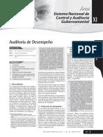AUDITORIA DE DESEMPEÑO