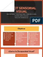 Deficit-sensorial-visual