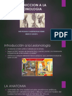 Introduccion a La Lesionologia